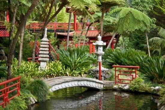Funchal Botanischer Garten Picture Of Madeira Botanical Garden