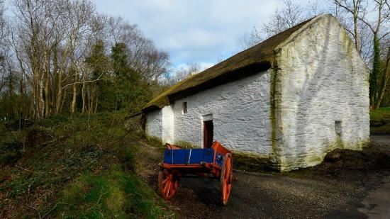 The National Folk Museum at Cregneash: Colorful antiques about improve the photo op.
