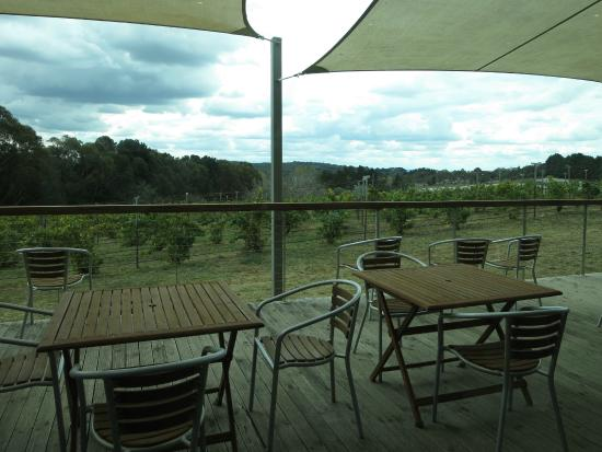 Lark Hill Winery Restaurant: View from the restaurant's deck