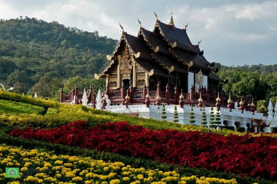 how to go to chiang mai