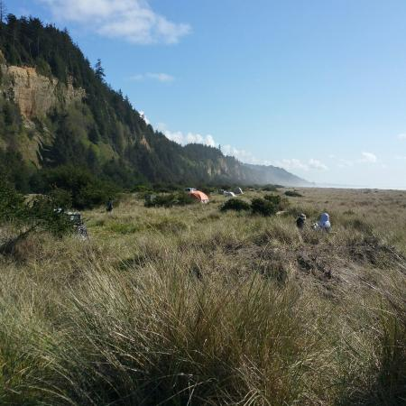 Gold Bluffs Beach Campground: View south from camp stop 12. April 2015