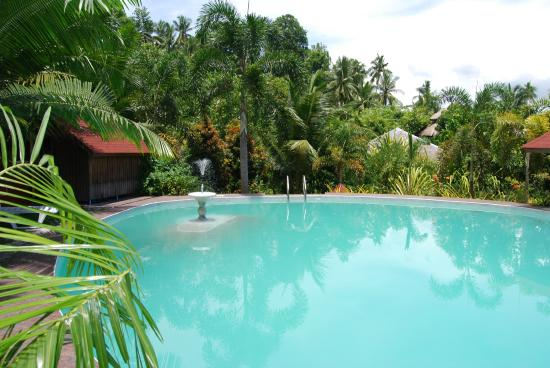 Vacker Och Ren Pool Picture Of Hof Gorei Beach Resort Samal
