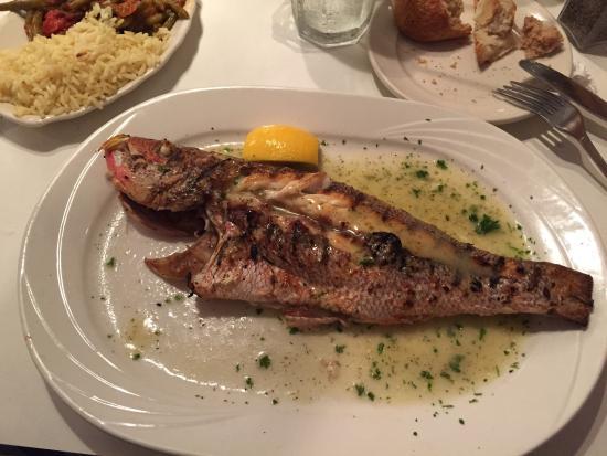 Greek Islands Taverna: ganzer fisch