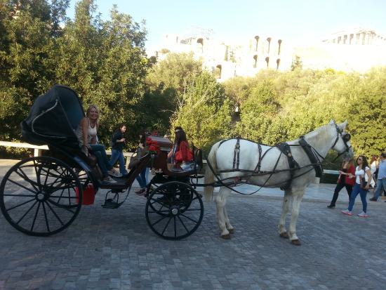 Pláka : Horse trip around plaka... not to be missed.