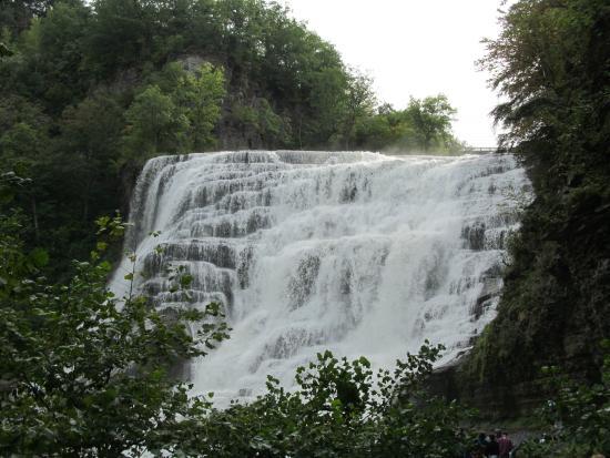 Ithaca Falls Natural Area: Ithaca Falls.
