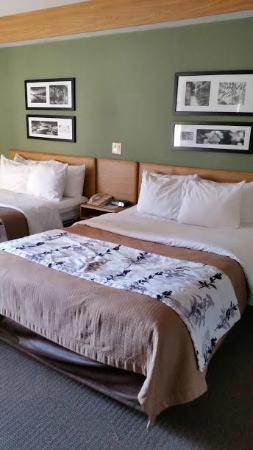 Sleep Inn & Suites - Johnson City : room with 2 full beds