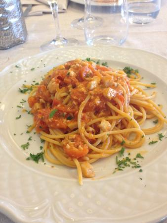 pasta al ragù di ricciola - Picture of Ristorante Le Terrazze sul ...