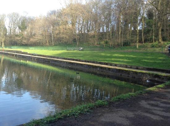 Weston Park, Sheffield City.