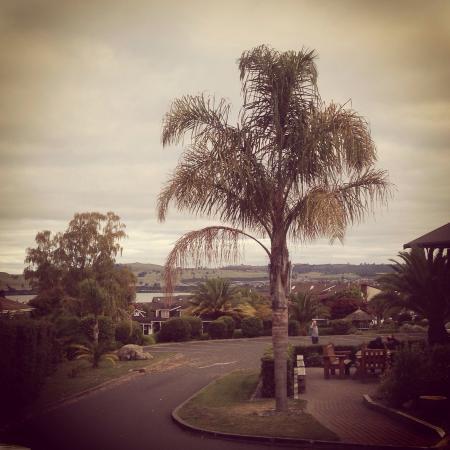 ليك لاند ريزورت تاوبو: View outside our room