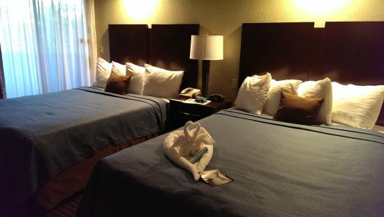 BEST WESTERN PLUS Wine Country Inn & Suites: Queen bed suite