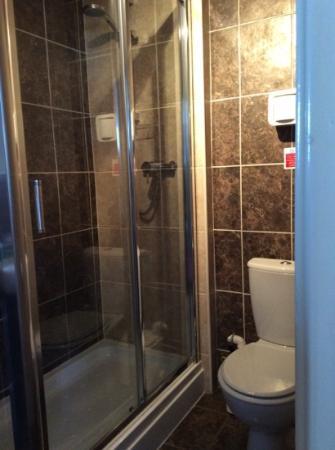 Swn Y Mor Hotel : toilet