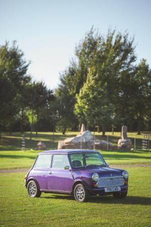 Herrington Country Park: Our mini in the park