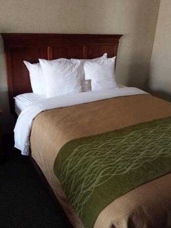Comfort Inn : Quarto confortável para uma noite de sono.