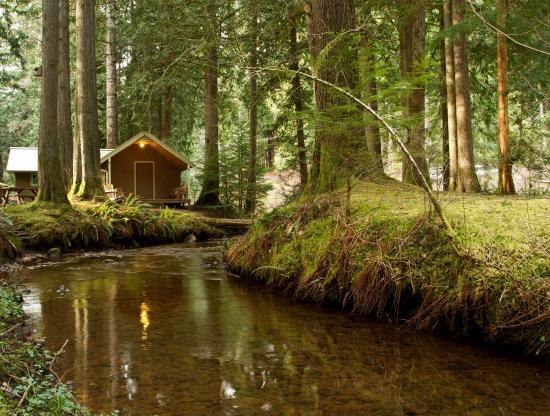 Mounthaven Resort: Maple Cabin