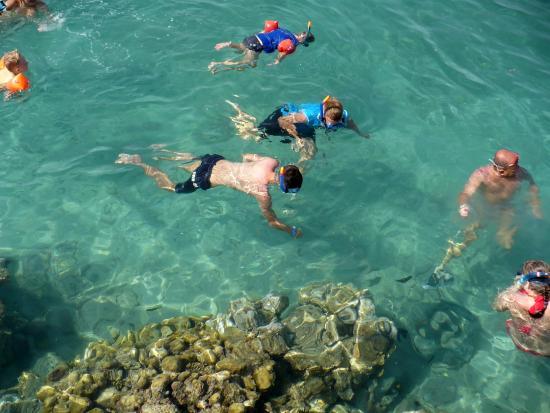 Mirage Bay Resort & Aquapark Lilly Land: Rafy,