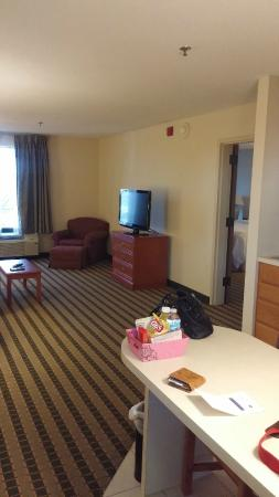 Hampton Inn and Suites-Chesterfield: Living room