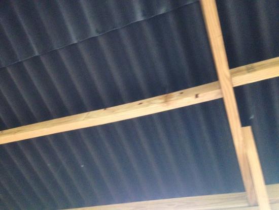 Leaky Roof leaky roof - picture of st. marys railroad, st. marys - tripadvisor