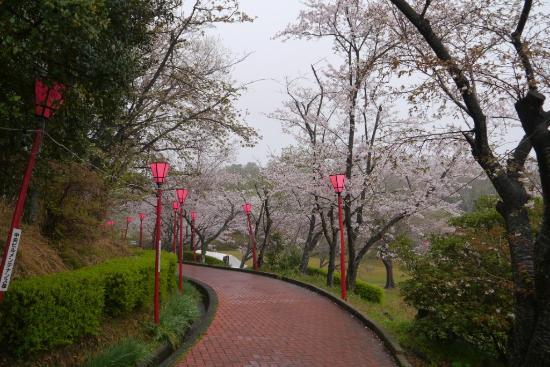 Hei-sogen Park