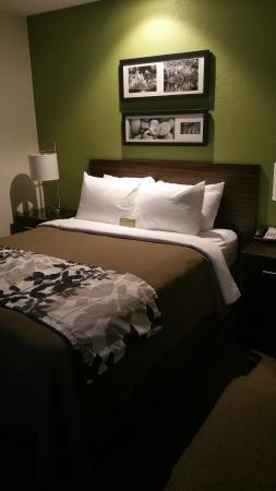 Sleep Inn : Room is compact but a very nice contemporary  theme.