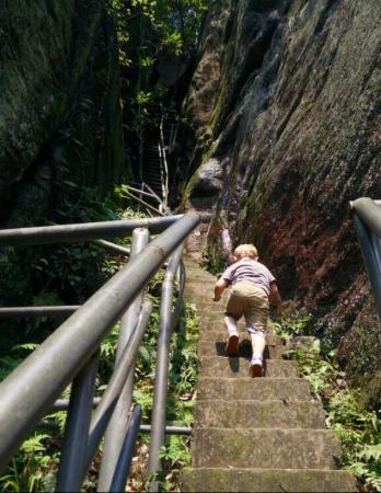 Wuyi County, China: Stairs in shouxian Canyon