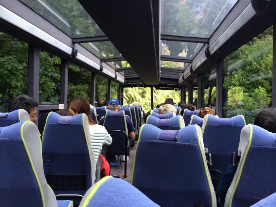 Real Journeys Glass roofed bus