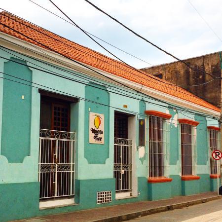 Mango Tree Hostel