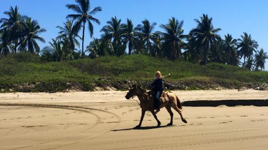 Mazatlan Tours: Ricky Martin is a great horse