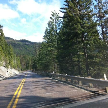 Flathead National Forest : FNF MT 83