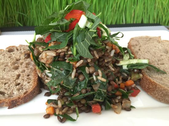 The 240: Lentil & wild rice salad. Nice warm salad.