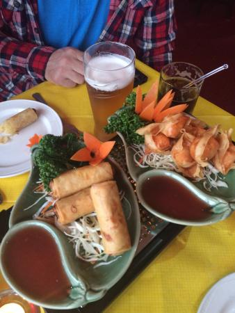 Singing Bamboo: Spring rolls and wontons