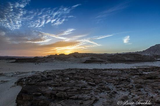 Sinai Safari - Day Tours: Sinai Desert