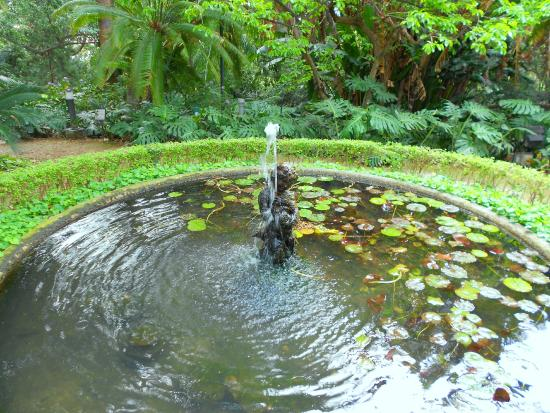 Des rtico picture of la concepcion jardin botanico for Conception jardin