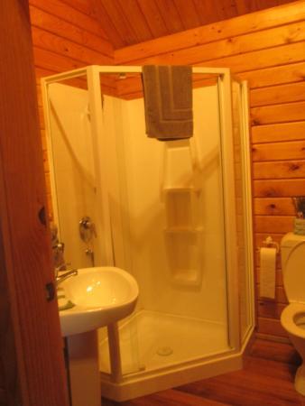 Fox Glacier Lodge: salle de bain