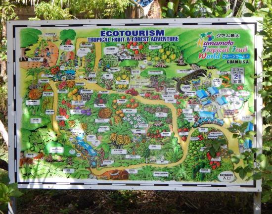 Hamamoto Tropical Fruit World: Fruit World map
