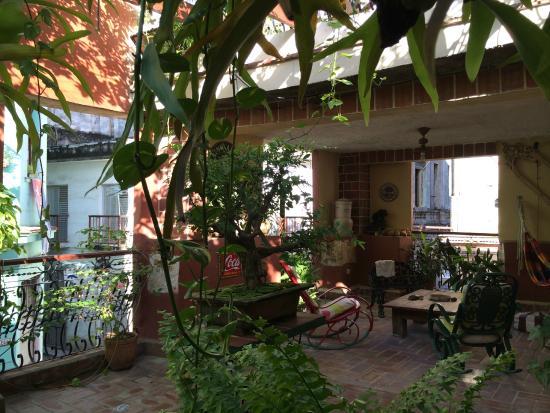 Casa Carlos y Graciela: Terrace