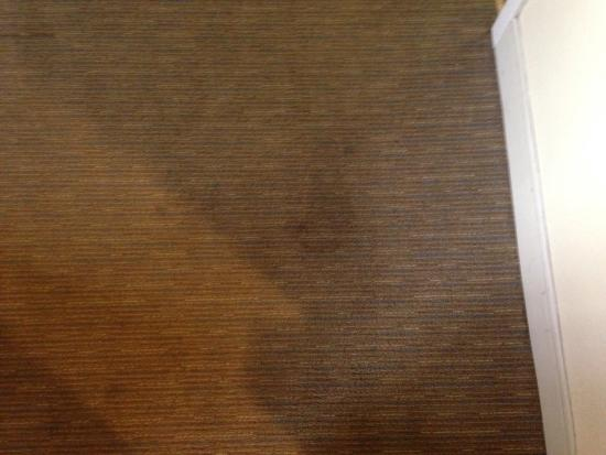 La Quinta Inn & Suites West Palm Beach Airport: Stains on the floor