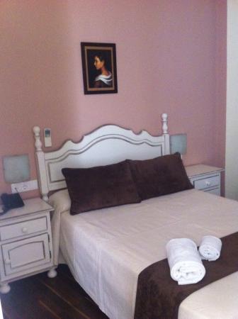 Hotel Gonzalez: Habitación limpia ,cómoda