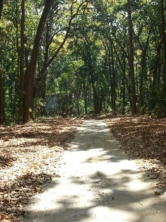 Dhikala Forest Rest House: dhikala