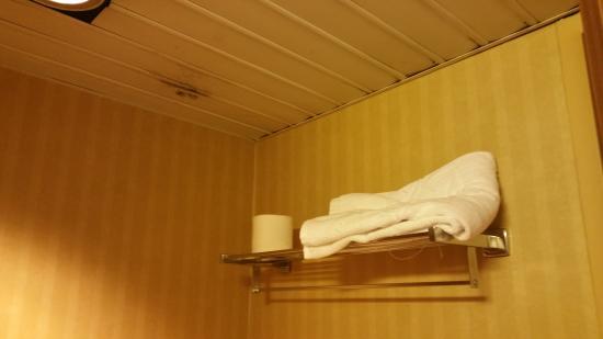 Makarem Ajyad Makkah Hotel : Bathroom mould