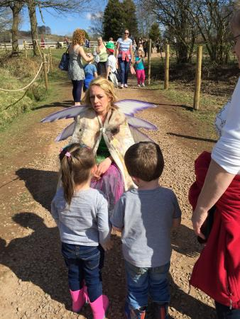 Mountain View Ranch: Fairy talking to the kids