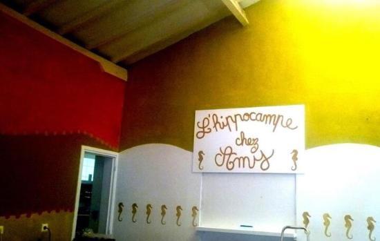 L'Hippocampe Chez Amy