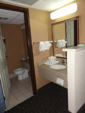 Pocono Plaza Inn: Bathroom