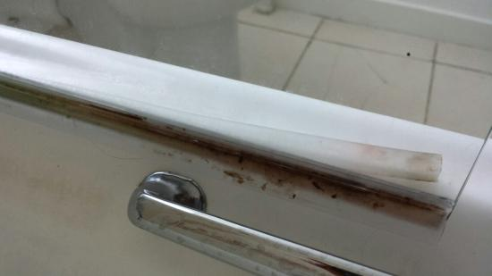 Boat of Garten, UK: Dirty shower screen