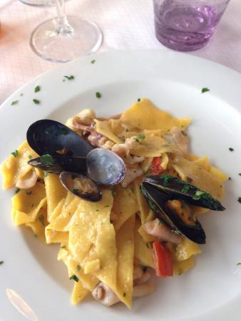 Ausblick picture of ristorante pizzeria jolly beach for Bagno jolly beach marina di bibbona