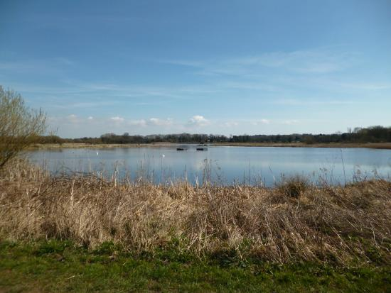 Staveley Nature Reserve