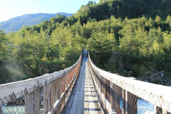 Queulat National Park: Puente Colgante