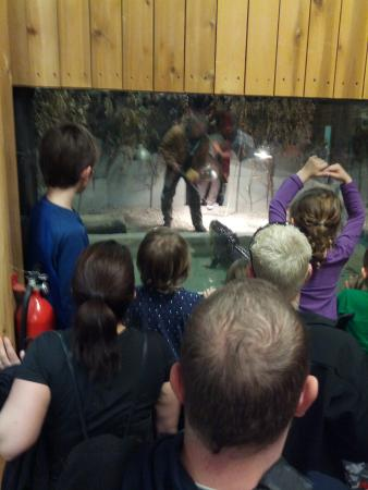 Little Ray S Reptile Zoo And Nature Centre Ottawa On