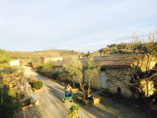 Nature in Domaine de Fraisse