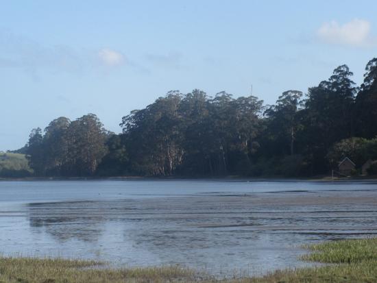 Bolinas Lagoon, Highway 1, Olema, Ca