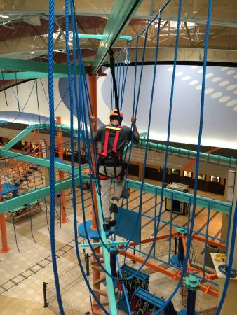 Tarentum, Pennsylvanie : Sky Trail is 32' tall with 2 levels of rope elements for participants to experience!